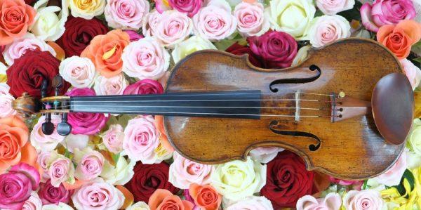 violin-1614610_1280